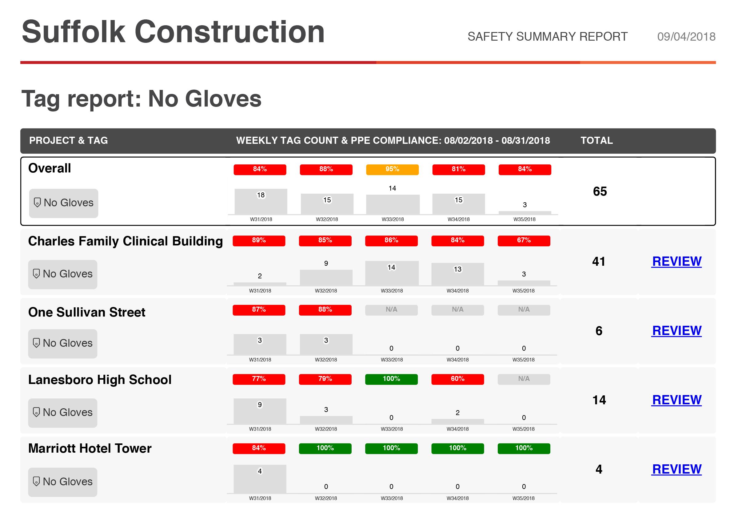 Safety summary report